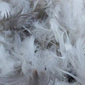 Plumes grises et blanches mélangées N°40 1kg - Fournitures tapissier