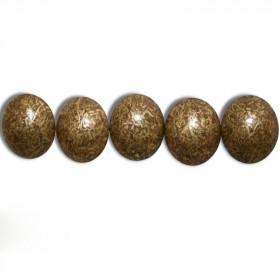 Carton de 25 000 clous Bronze Doré 10,5mm - Clous tapissier