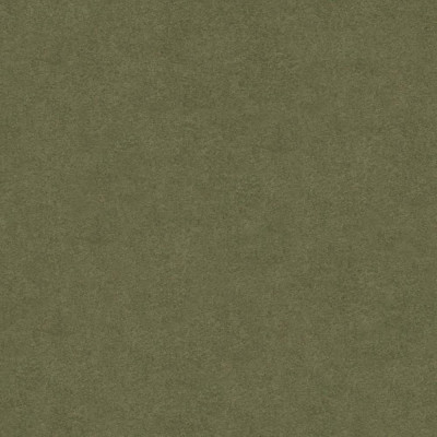 Tissu Casal - Gamme Colorado - Mousse - 140 cm