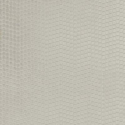 Tissu Camengo - Collection Amazone - Pérou Beige - 140cm