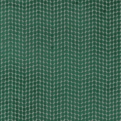Tissu Camengo - Collection Amazone - Pérou Vert - 140cm