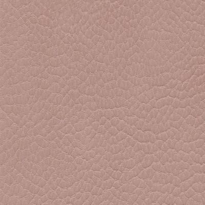 Simili Cuir Skai Parotega NF M1 Light Rosé au mètre