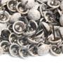 1000 Clous tapissier Prestige Blanc Crépi Perle Fer 11 mm